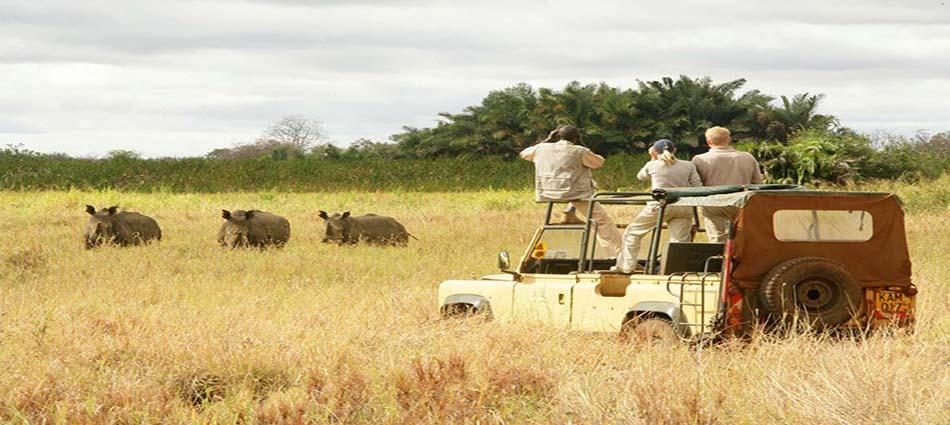 """"""" safari adventures"""" world adventures Top 10 amazing world adventures kenia reisen safari copyright ELSAS KOPJE klein2"""