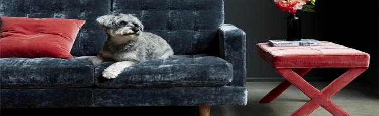 Sophisticated blue velvet sofa for small apartments