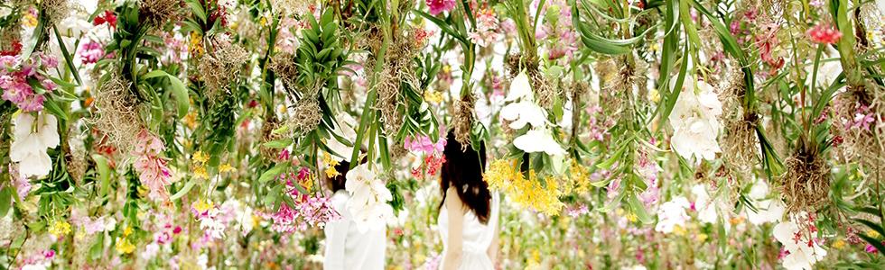 M&O Paris 2015 - Floating Flower Garden by Team Lab