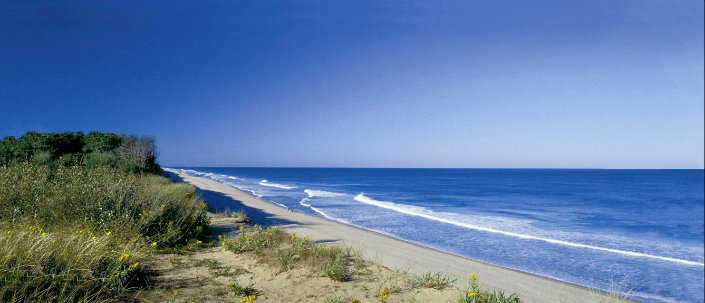 10 beaches to visit this summer on Unites States 10 beaches to visit this summer in United States 10 beaches to visit this summer in United States coast guard beach