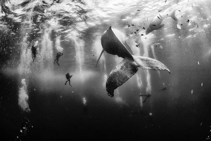 The Winners of National Geographic 2015 Traveler Photo Contest National Geographic The Winners of National Geographic 2015 Traveler Photo Contest download