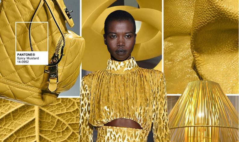 Pantone fashion colour: Spicy Mustard 14-0952