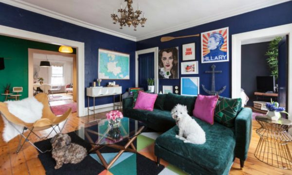 10 Amazing Interior Design Styles Every Dog Lover Must-See
