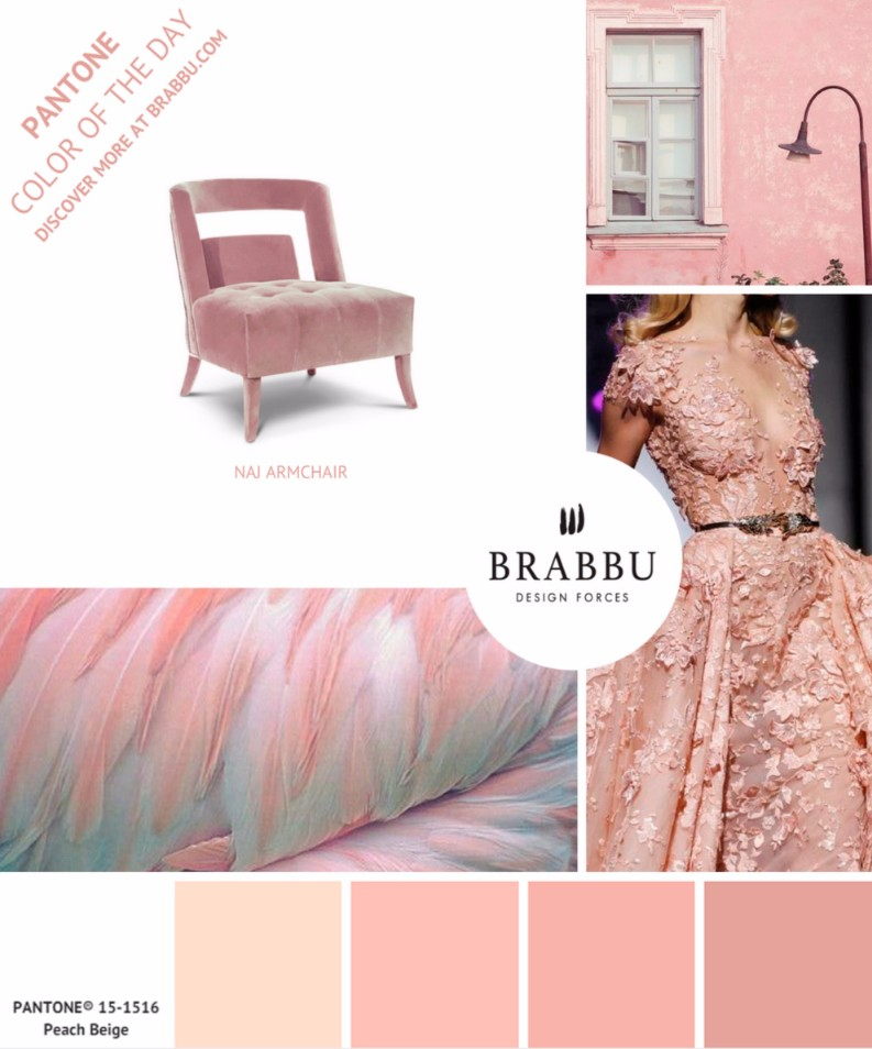 5 Colorful Interior Design Tips with Pantone Colors of the Week | Interior Design Tips. Pantone Colors of the Week. Color Trends #designtrends #interiordesigntips #pantonecoloroftheday > more inspirations here: https://goo.gl/CPyiEI 5 Colorful Interior Design Tips with Pantone Colors of the Week 5 Colorful Interior Design Tips with Pantone Colors of the Week 5 Colorful Interior Design Tips with Pantone Colors of the Week 5