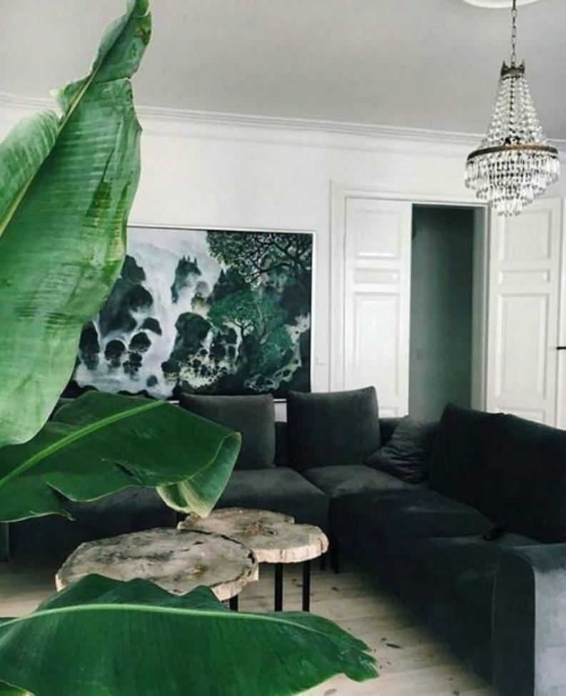 10 Interior Design Tips To Get The Greenery Summer Look Interior Design Tips 10 Interior Design Tips To Get The Greenery Summer Look c7f11ac48bfe5340bfea5040af9306e3