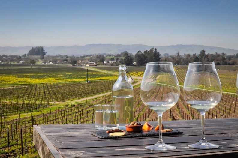 Top 10 Things To Do This Year  Best Travel Destinations Top 10 Things To Do This Year In the Best Travel Destinations Scribe Sonoma1