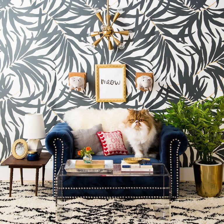Tour this Feline Room Modern interior design modern interior design Tour this Feline Room Modern interior design and celebrate Cat's Day! square 1477682850 national cat day 2
