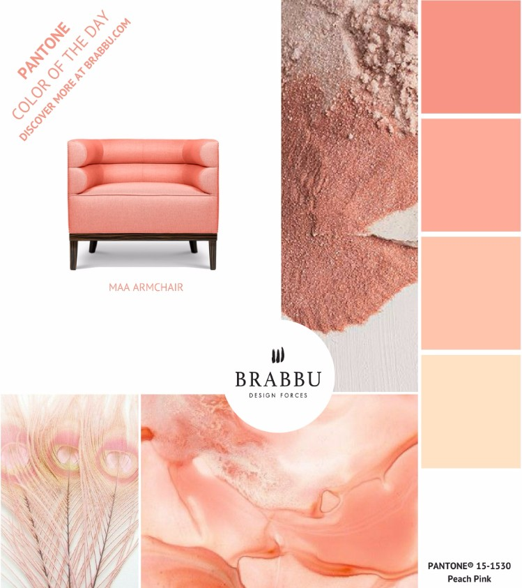 10 Blushing Beauty Design Furniture in Pink You Must Know. Modern Design Furniture. Home Decor Ideas. Pink Velvet Sofa. #homedecorideas #modernsofas #moderndesignfurniture. Get major inspiration here » https://goo.gl/Z2RoJg modern design furniture 10 Blushing Beauty Modern Design Furniture in Pink You Must Know  1C1C1A33A87070C0A282A58524201B1B5D06B078D4F286156C pimgpsh fullsize distr