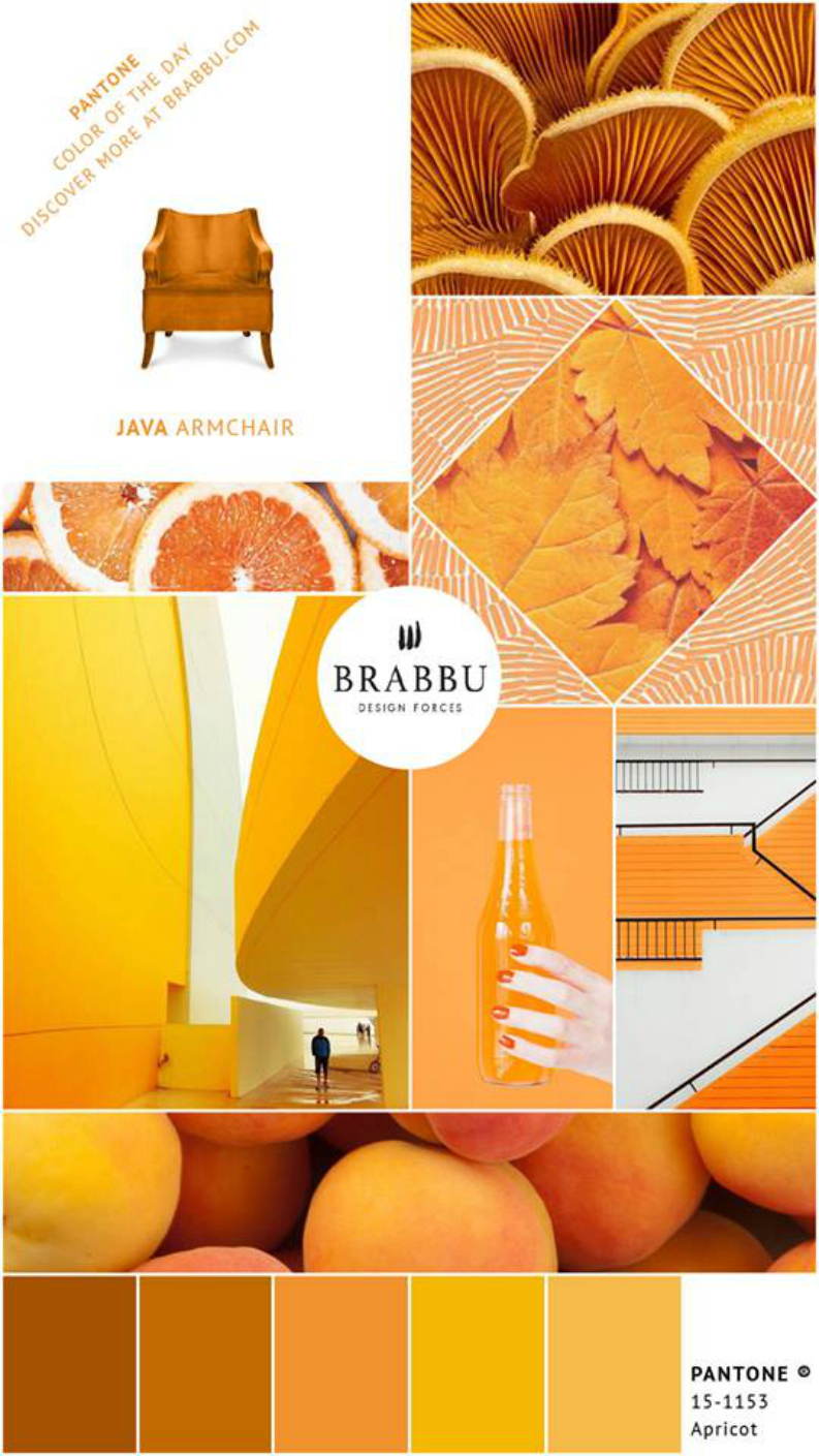 5 Interior Design Ideas With the Pantone Colors Of The Week  interior design ideas 5 Interior Design Ideas With the Pantone Colors Of The Week 5 Interior Design Ideas With the Pantone Colors Of The Week 1