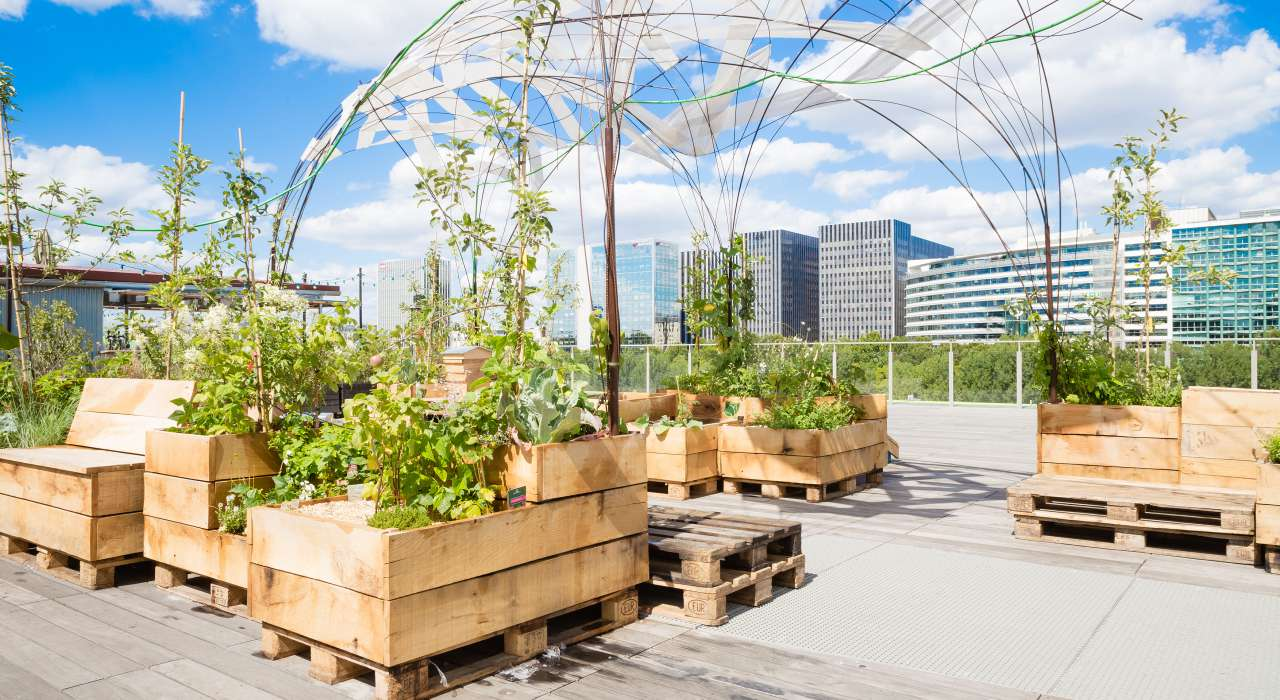 La cité de la mode et du design paris Paris Design Guide: The Best Places to Celebrate Design Living Roof    Samuel Lehue  de   Les Docks Cite   de la Mode et du Design