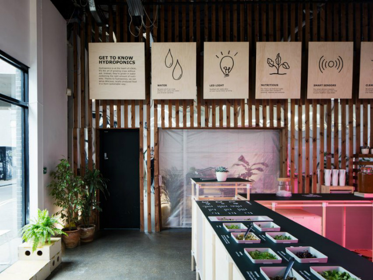 dezeen awards Interiors shortlist: Dezeen Awards 2018 Lokal 2