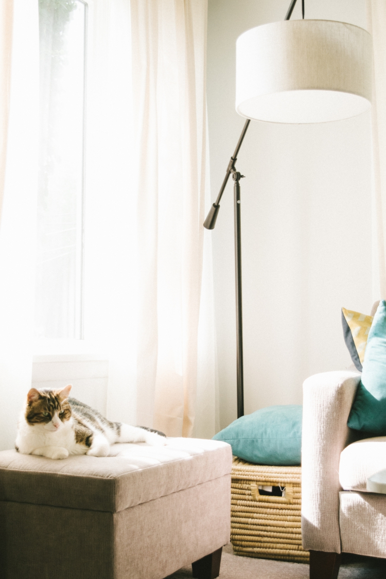 Chicago Tips - 5 Ways to Make a Small Living Room look Bigger