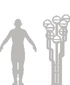 human-scale-niku