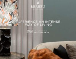 BRABBU New Products 2020